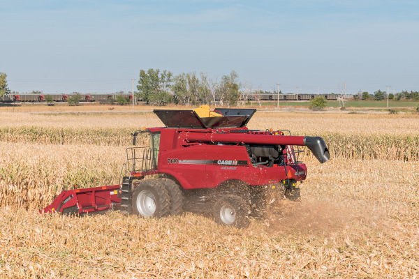 Case IH | Corn Heads | Model 4208 Corn Head for sale at Red Power Team, Iowa