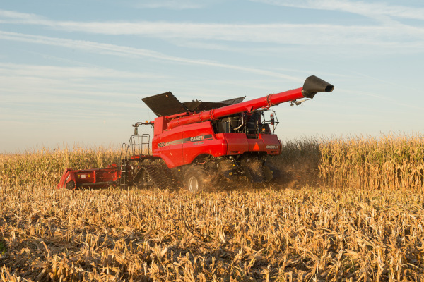Case IH | Corn Heads | Model 4412 Corn Head for sale at Red Power Team, Iowa