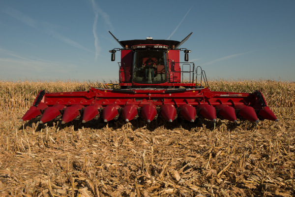 Case IH | Corn Heads | Model 4412F Corn Head for sale at Red Power Team, Iowa