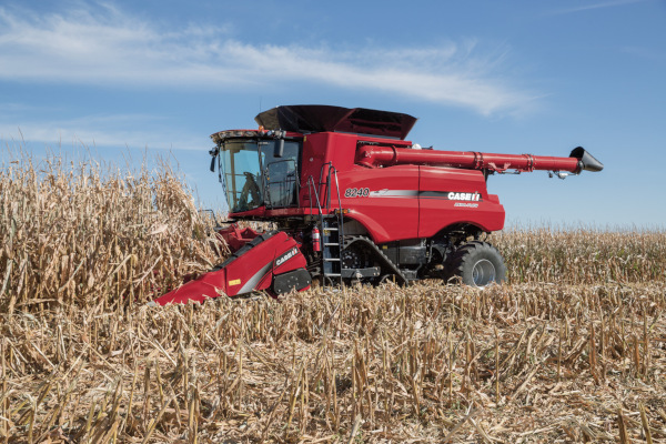 Case IH | Harvesting Equipment | Corn Heads for sale at Red Power Team, Iowa