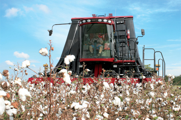 Case IH | Harvesting Equipment | Module Express Cotton Pickers for sale at Red Power Team, Iowa