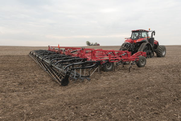Case IH | Field Cultivators | Model Tiger-Mate 255 Field Cultivator for sale at Red Power Team, Iowa