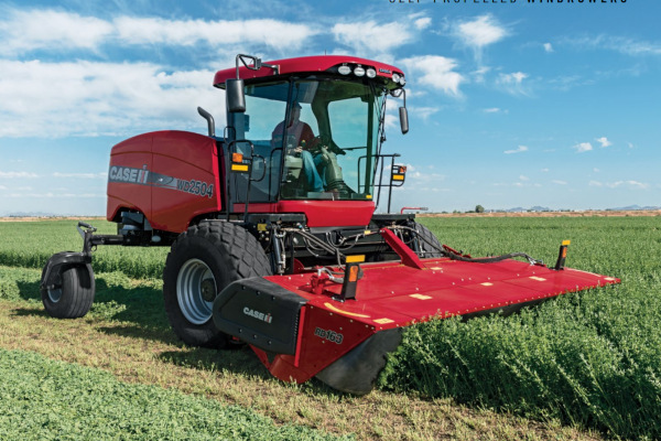 Case IH | Windrowers | Model WD2504 for sale at Red Power Team, Iowa