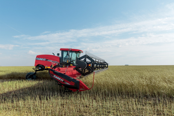 Case IH | Windrowers | Windrowers for sale at Red Power Team, Iowa