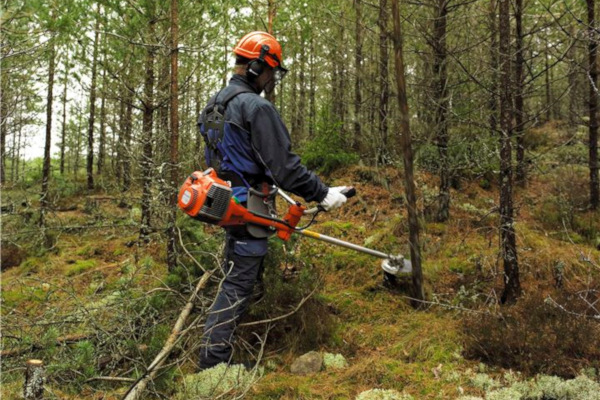Husqvarna | Saws and Tree Care | Forestry Clearing Saws for sale at Red Power Team, Iowa