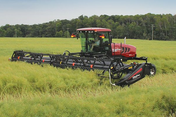 MacDon | Windrowers and Headers | M155 E4 SP Windrower for sale at Red Power Team, Iowa