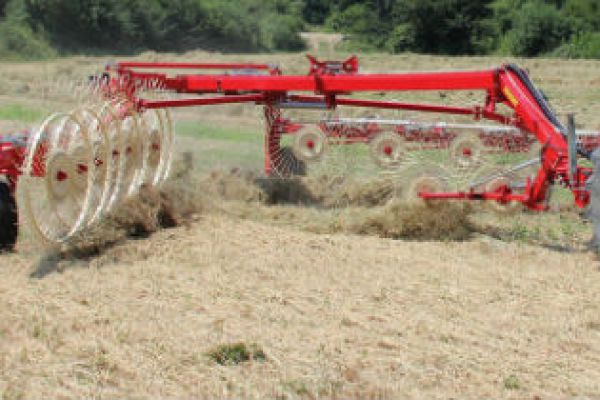 Farm King | Hay Tools | Easy Rake for sale at Red Power Team, Iowa