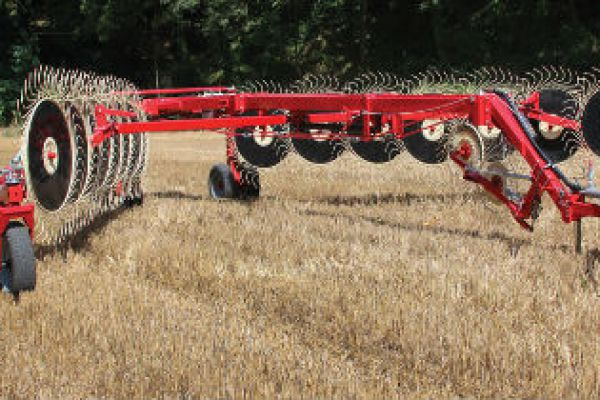 Farm King | Hay Tools | Easy Rake - Superstar for sale at Red Power Team, Iowa