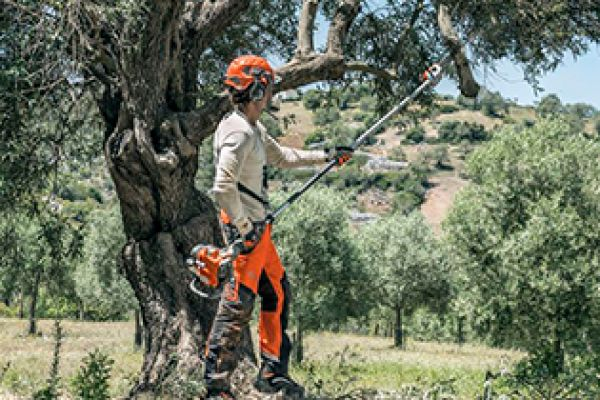 Husqvarna | Saws and Tree Care | Pole Saws for sale at Red Power Team, Iowa